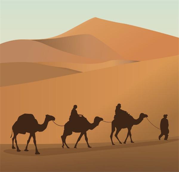 骆驼.png